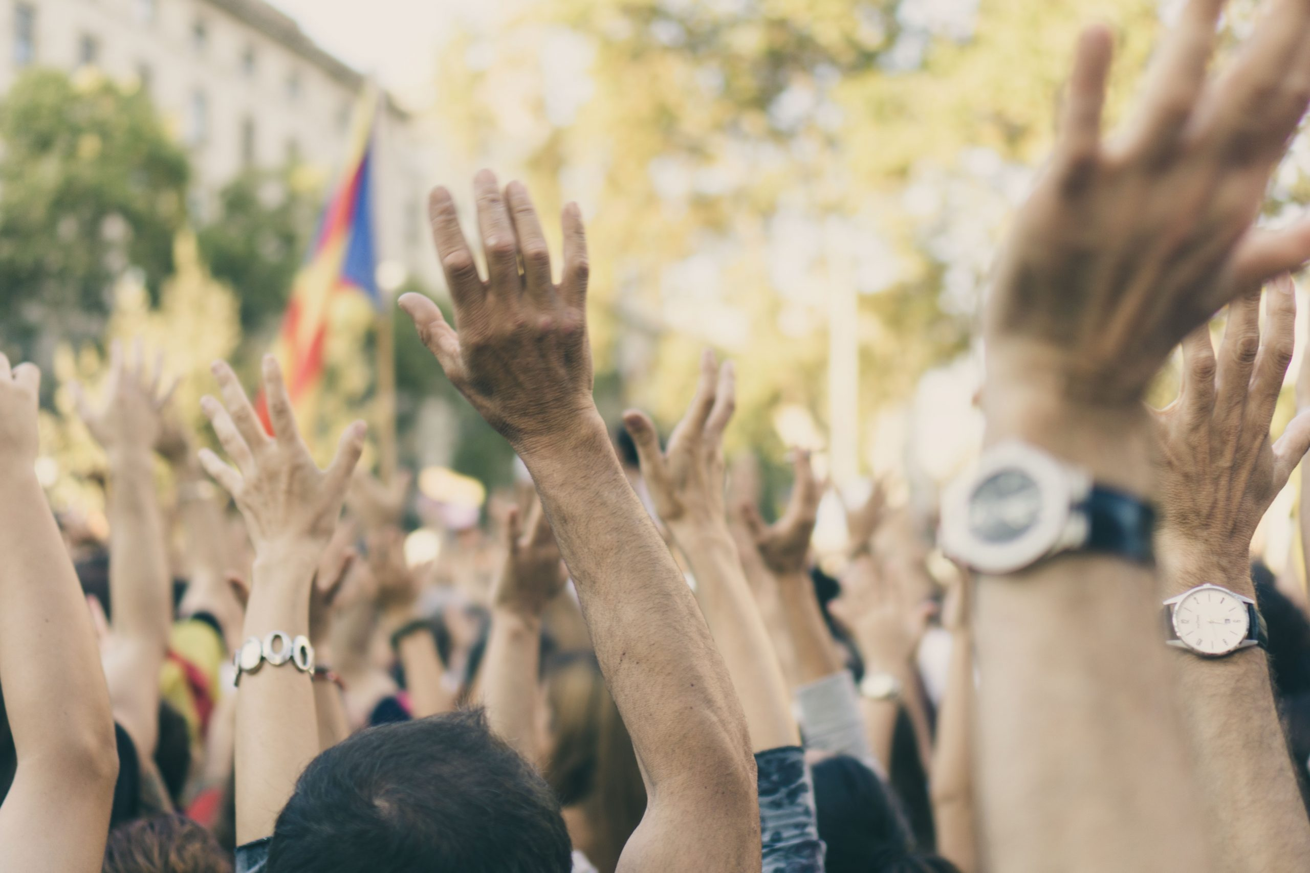 Hands in the air at a protest